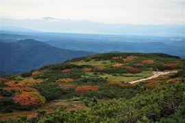 日本で1番早い紅葉を見に行った! 大雪山旭岳