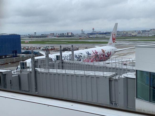 お盆休みに入る前に福岡ストレス発散旅行。3泊4日毎晩のみに歩きました。<br />帰りの飛行機はTOKYO2020塗装機