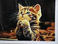2019年ベラルーシとモスクワ旅行2日目(2)ミンスクのネコ博物館はネコ・アート・コレクションがたくさんで、保護ネコカフェみたいなかんじ?