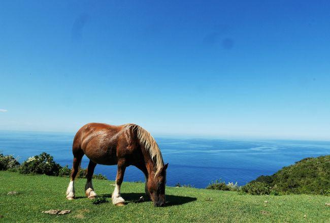 【2019夏旅】行くぜ、絶景の西ノ島【楽園の地へ】