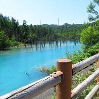 北海道・東北動物園めぐり�【青い池】