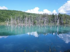 【RUN旅】北海道マラソン(2012年)四季彩の丘、青い池