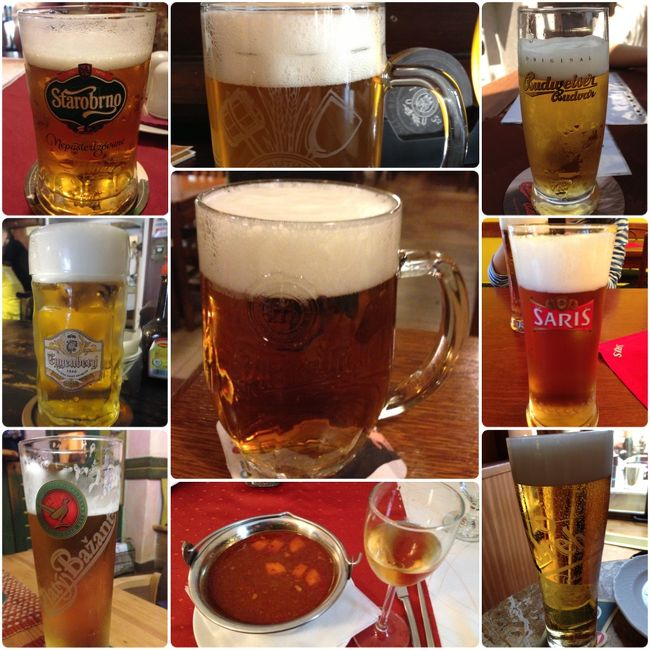 チェコを中心に東欧三国を回りました(他はスロバキア、ハンガリー)。<br /><br />観光ももちろんしましたが、大きな目的の一つが、現地のいろんなビールを飲むことでした。<br />チェコはやっぱりビールがそこら中にあって、どれも美味い!しかも安い!<br />訪れた町は、プラハ、プルゼニュ、チェスキー・クルムロフ、ブルノ。<br />それぞれにおいしいビールがありました。ただ、私はビールやお酒の専門家でも何でもないので、あまりうまく味の表現はできていないかもしれませんが。。<br /><br />日本で手に入るのは、現在、ピルスナー・ウルケル、バドバー、スタロプラメン、その他はベルナルドなど、少数の銘柄が時期によっては・・・という感じだと思います。それらの現地の味を楽しみつつ、日本では入手できないものもたくさん飲むことができました。<br /><br />この旅行記では、チェコのビールや食事を中心に、同時に訪れたスロバキアのビール、ハンガリーのワインなども含め書いていきます。