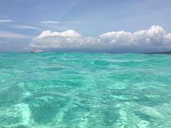 フィリピン / オスロブ&スミロン島  可愛いジンベエザメと 真っ白で美し過ぎるサンドバーを満喫