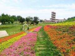 壁も屋根も全部本物の花が植えられている花之教堂♪花の教会堂♪マルコポーロ花世界楽園♪2019年6月中国 揚州・鎮江7泊8日(個人旅行)121