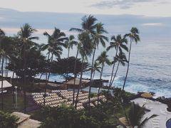 ハワイ島ハネムーン① JAL直行便、ロイヤルコナリゾート、uccコーヒー農園