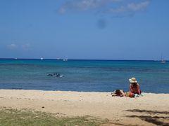この歳で初めてのハワイ 「おまけ」で付いて行った4.1日間(11:ウクレレとデモ行進 ハワイの光と影)