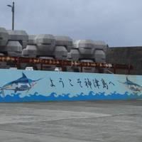 ~2泊2日(船内1泊含)で神津島へ女1人の弾丸島旅!その① ~