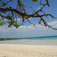 2019年10月 5泊6日沖縄宮古島旅行記⑥イムギャーマリンガーデン~砂山ビーチ~渡口の浜で台風接近前に帰宅