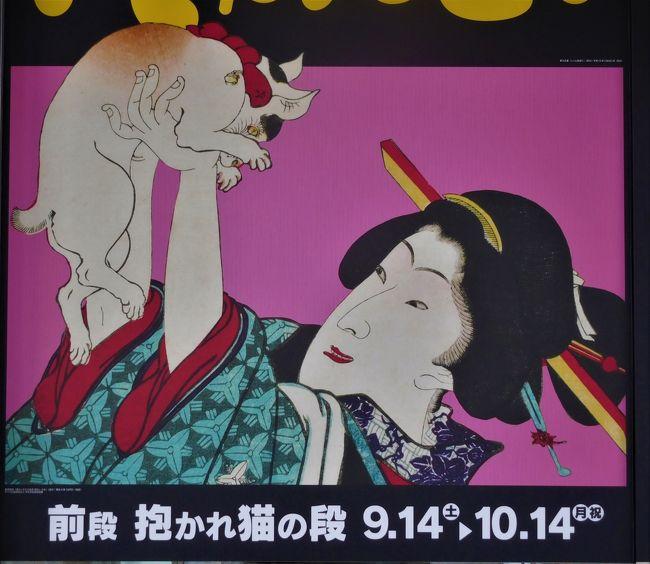 山口県立萩美術館・浦上記念館で「にゃんとも猫だらけ」展がありました。<br />平木コレクションの浮世絵版画がたくさん出品されています。<br /><br /> 前段は抱かれた猫特集で、後段は大騒動の作品です。<br />かわいい猫を見たいので前段を見ることにしました。<br /> 着物の模様の細かいのや、今でも通用するデザインなどを見て江戸時代ってすごかったんだなと思いました。<br /> 作品の中の白猫、白黒猫、三毛猫などを探すのも楽しかったです。