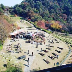 シニアトラベラー 秋の神戸満喫の旅