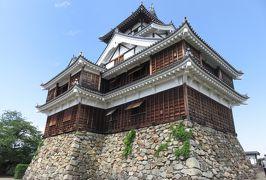 2018春、兵庫と京都の名城巡り(10/14):5月4日(10):福知山城(1):城下町を歩いて福知山城へ、山法師、天守