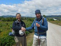 アンダルシアの春祭りから銀の道、そして巡礼の道を歩く 17 巡礼3日目  Villafranca del Bierzoまで31.8km