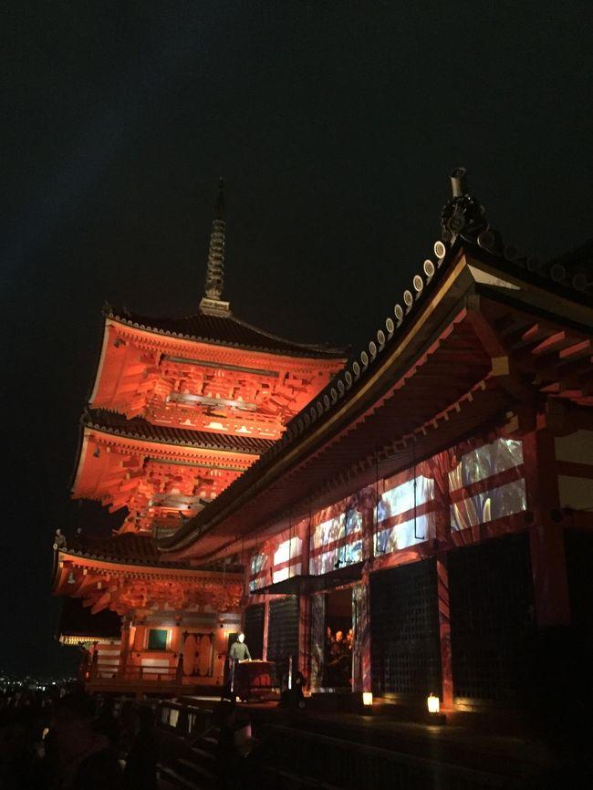 本乙は京都でゆっくりしたかったのですが、紅葉シーズンのしかもライトアップ時期に直前で宿を抑えようなんて甘い考えで・・笑<br />大阪にホテルを抑えつつ、日帰り京都にチャレンジしましたが、ライトアップのため観覧時間も延長されていることもあり、思いの外楽しめた1日となりました。<br /><br />※ライトアップ時期は各寺院によって異なる場合がありますので、各々行きたい場所の確認は必須です。<br /> 参考にしたHPは下記となります<br /> 京都紅葉ライトアップ案内<br /> URL:<br />   http://www.imamiya.jp/haruhanakyoko/season/clightup.htm<br /><br />ゆっくりするにこしたことはありませんが、もし大阪旅行をお考えの方も足を伸ばしてみてはいかがでしょうか?