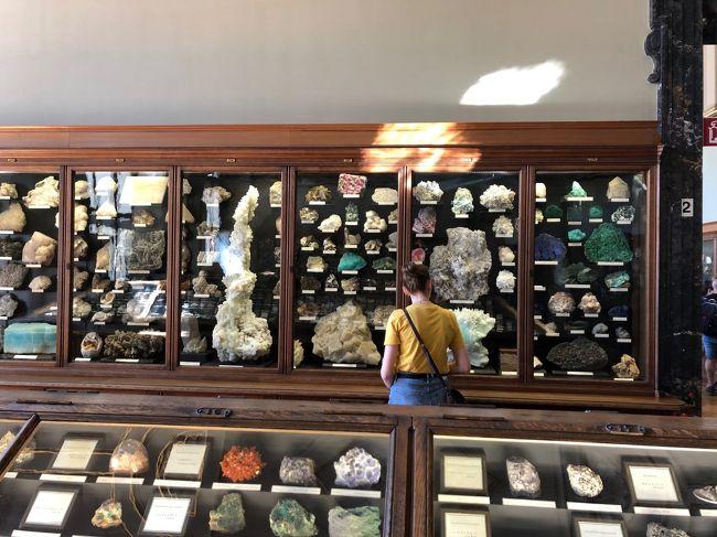 2019年夏休み,みさぱぱ夫婦はまたまたオーストリアへ,チロルのツィラタールZillertalとウィーンWienを訪ねました.今回はANAの羽田-ウィーン直行便でチロル10泊+ウィーン4泊の旅,チロルの山々のハイキングと古都の街歩き,そしてウィーンの博物館・美術館めぐりを存分に楽しみます.チロル滞在は日帰りで訪ねる目的地へのアクセスを考え,前半フューゲンに6泊,後半マイアホーフンに4泊と分けました.<br /><br />第14日目(9月4日)はウィーン自然史博物館とウィーン美術史美術館を訪ねました.この旅行記(1/2)はウィーン自然史博物館の見学までをまとめました.自然史博物館はみさぱぱが大好きな鉱物岩石の展示が充実していて,丸一日滞在しても飽きないのですが...<br /><br /><br />----- 旅のお品書き -----<br /><br />■8月22日(木) いざチロルへ!ANA直行便とレイルジェットでツィラタール入り<br />(宿泊ホテル:Aktiv und Welnesshotel Haidachhof 6泊)<br />■8月23日(金) 予行演習?霧のフューゲンベルクをハイキング♪<br />■8月24日(土) 中世のパイプオルガン響くクーフシュタイン城塞と街歩き<br />■8月25日(日) 中世の街シュバーツで銀鉱山の冷涼坑内トロッコツアー♪<br />■8月26日(月) 秘境気分を満喫!200m級断崖のクントラー峡谷ハイキング<br />■8月27日(火) 最奥ツェム谷で石探しハイキングとクラウゼンアルムのヨーデル♪<br />■8月28日(水) 晴天のシュピールヨッホ散策そしてマイアホーフン街歩き<br />(宿泊ホテル:Aparthotel Thalerhof 4泊)<br />■8月29日(木) 再挑戦!エーデルヒュッテをめざし登山ハイキング<br />■8月30日(金) 絶景!オルプラーヒュッテをめざし登山ハイキング<br />■8月31日(土) パノラマ眺望!ペンケンベルクをハイキングで迷う?<br />■9月1日(日) いざウィーンへ!街歩きそして3年振りアイスグライスラー<br />(宿泊ホテル:Boutiquehotel Stadthalle 4泊)<br />■9月2日(月) 理系好みのウィーン技術博物館と街歩き<br />■9月3日(火) 不思議なオーストリア応用美術館とピカソ絵画のアルベルティーナ美術館,窓口カフェへ<br />→9月4日(水) 定番!ウィーン自然史博物館とウィーン美術史美術館,オペラのライブビューイング♪<br />□9月5日(木) 帰国フライト,ウィーン空港(機中泊)~<br /> 9月6日(金) ~羽田空港へ あ~あ帰国しちゃった!<br /><br />いつもながら拙い旅行記ですが,最後までご笑覧頂ければ幸いです(^^)<br />