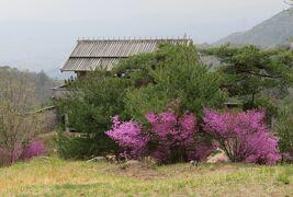 2018春、岡山の名城巡り(8/13):4月7日(8):鬼ノ城(8:完):礎石建物跡、倉庫群跡、管理棟跡、角楼跡