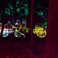 夏の終わり 糺の森を 夜歩く