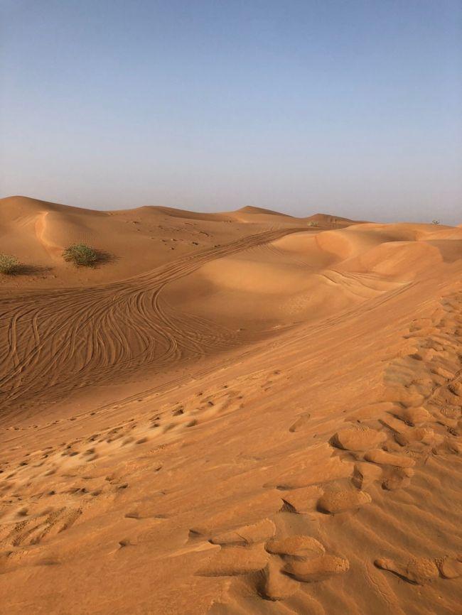 3日目はデザートサファリで砂漠に&#10084;︎<br />ピアシックでランチ&#10084;︎<br />