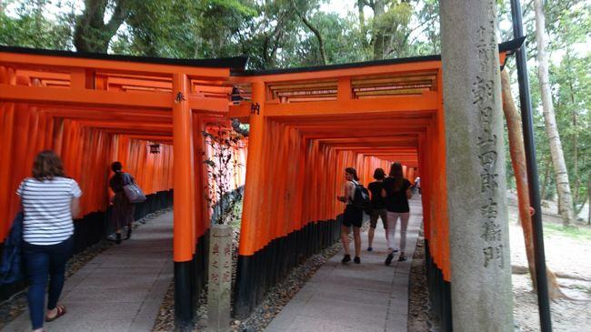 京都伏見に行ってきました。<br />今日の目的は、大好きな神社のひとつ伏見稲荷大社にお参りして稲荷山に登り、伏見の酒処までお散歩して美味しいお酒を頂く…<br />ではではスタートです!
