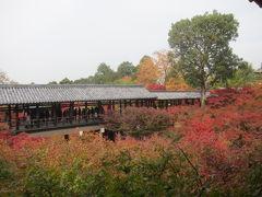 秋の東福寺