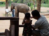 チェンマイからバンコクまでタイを旅した vol.2 ランパーン