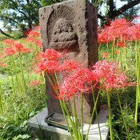 リベンジ!曼珠沙華と日和田山〜高麗神社ハイキング
