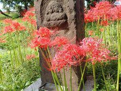 リベンジ!曼珠沙華と日和田山~高麗神社ハイキング