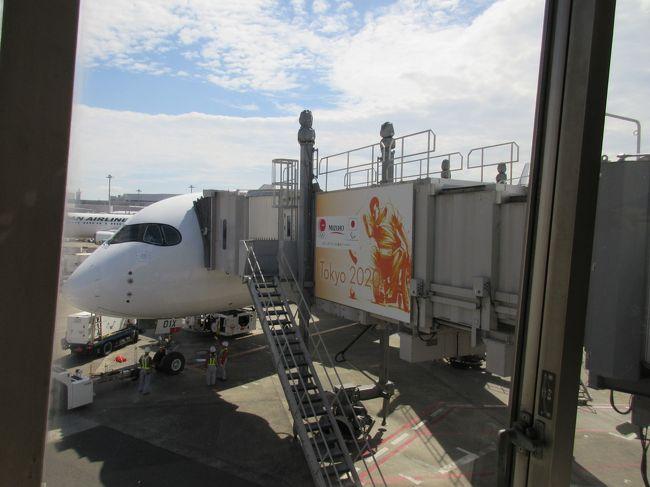 AIRBUS A350がJALさんが9月1日から東京(羽田)-福岡線 1日3便で就航が開始されて予約開始から週末便のFクラス(A・C /H・K席)を予約出来たのが9月の月末で仕事を調整をして やっと行って来れました AIRBUS A350に乗降するだけの つまらない旅行記で申し訳ございません<br />それと福岡県が初でして 時間も無く 何処へ行けば良いのかも分からず ホテルと博多駅の往復だけの旅でした<br /><br />余裕を持って自宅を出たのですが 予定通り羽田迄は30分で着いたのですが <br />土曜日で P1駐車場だけでなく全ての駐車場が 1時間以上の入庫待ちで羽田では時間の余裕がなく慌ただしく乗航になりました