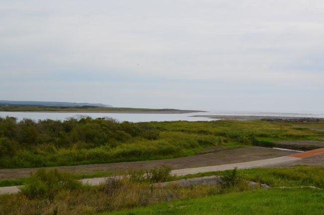 十勝川はいうまでもなく大河である。<br />  <br />そしてその河口は遠路訪れるに足るほど堂々として、すべてを包み込むような静寂に覆われている。<br /> <br />道道911号を南下すると大津の集落に出る。集落のはずれから十勝川の土手に上ることができる。<br />対岸がはっきりしないほど広大な河口で、砂洲と生い茂った灌木が広がっている。<br />どこまでも静かで空の果てまで物音ひとつしないような気になる。<br /><br />望遠レンズで河口を窺うと、河口と海との境はほとんど区別がつかず、水鳥が浮かんでいるのと砂洲が張り出しているのとで、かろうじて河口だと判別できる。<br />  <br />この地は北海道開拓の民が上陸し、十勝川をさかのぼっていったとされる地で、「十勝発祥之地」の碑が建っている。 <br />  <br />さらに大津漁港を過ぎて車を長節湖の方に進めると、アキアジのぶっ込み釣りの海岸で、晩夏から秋にかけて海岸にずらっとアキアジ釣りの竿が並ぶ。<br />  <br />長節湖にはキャンプ場や広い駐車場ができつつあるが、十勝川河口の遠大な風景と果てのない静寂はこれからも失われることはないだろう。
