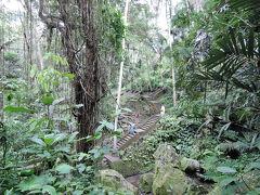 2017年11月 バリ島旅行・中部ウブド2