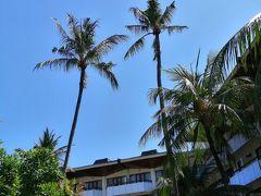 (8日目 ついに最終地 サヌールへ )この夏 2回目のバリ島 とにかくのーんびり…ゆ〜っくり