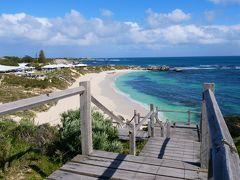 ワイルドフラワー咲く西オーストラリア9日間 その5 (ロットネスト島とパースダウンタウン)