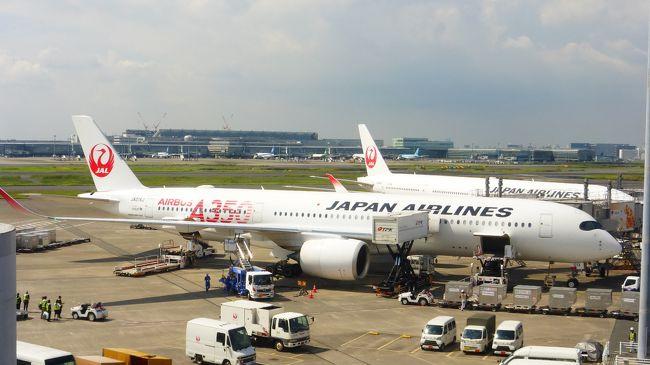 JALの新機材である、エアバスA350-900が、9月1日から羽田~福岡間に就航したので、機会を見つけて乗りたいとは思っていました。<br /><br />JAL A350-900公式サイト:https://www.jal.co.jp/dom/A350/index.html?m=dfs<br /><br />私は、なるべく安くなる運賃重視であり、いち早く乗ってみたい派ではない為、当初は、10月以降の先得運賃+ホテル探しで、休日に合わせた安い日程を探していたのですが、思った程安くならない為、JALのダイナミックパッケージ(飛行機+ホテル)で探した所、1ヶ月程先に出発である、9月29日(日)発が比較的安かった為、ダイナミックパッケージで行く事に決めました。<br /><br />また、今回は、タイムセール期間中に予約出来た為、福岡~羽田往復航空券(往路:クラスJ席、復路:普通席)+銀座グランドホテル シングルルーム+JALマイル 1,500マイル付きプランで、33,900円(往路普通席なら、31,900円)でした。<br /><br />飛行機は、勿論、往復ともA350-900運航便を選択しました。<br /><br /><br />今回の日程・行程は下記の通りです。<br /><br />9月29日(日)<br /><br />福岡 9:00ーJAL306(クラスJ席)ー羽田 10:35<br /><br />都内散策(汐留、国立競技場、新宿、銀座)<br /><br />銀座グランドホテル シングルルーム(14平米)泊<br /><br />ホテル公式サイト:http://www.ginzagrand.com/index.html<br /><br />※実際は、このシングルルームが建物内側部屋で景観が良くなかった為、フロントで追加代金を支払って、ダブルルーム(16平米)に変更して貰いました。<br /><br />9月30日(月)<br /><br />羽田 12:10-JAL317(普通席)-福岡 14:00<br /><br /><br /><br />『銀座グランドホテル』から羽田空港への移動と、空港内を散策した時の様子です。