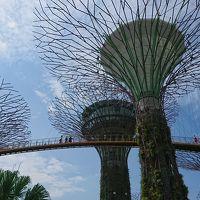 GW家族旅行シンガポール