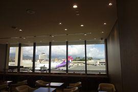 初めてのハワイ3泊5日帰国編:JALサクララウンジハレ、JL789便で成田へ、お土産紹介