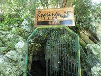 ウエストモアランド再び(後半)(Roaring River Cave, Westmoreland, Jmaica)