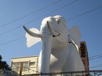 マンダレー逍遥(2019年1月ミャンマー)〜その2:ゼージョー(市場)&マンダレー・モンティ食べ歩き