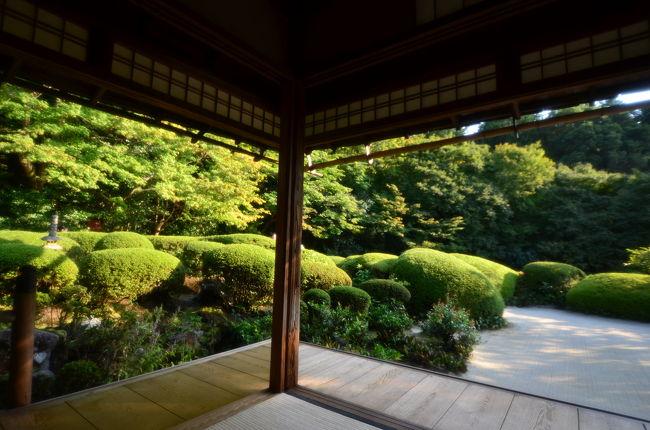 2019/10/6(日)<br />秋晴れの気持ちいい日の午後、急に思い立って妻と京都東山へ散策に行ってきました。<br />叡山電鉄一乗寺駅から徒歩で向かうと、白川通りを越えたあたりから登り道になります。東山山麓に点在する諸寺を周遊してきました。