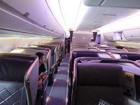 シンガポール航空A359、ビジネスクラスで南アフリカ、個人手配の気ままな旅行、シンガポールからヨハネスブルグ