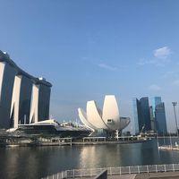 初シンガポールはマリーナベイサンズに泊まりたい!2019 2日目前半