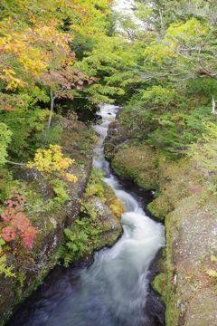 2019年10月6日 アユダプジャー休暇 日光旅行 奥日光滝巡り編