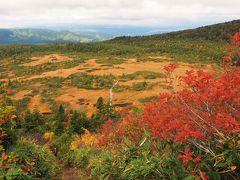 錦秋の八甲田山と酸ヶ湯温泉湯治の旅 その3大岳登山・毛無岱の絶景と色鮮やかな紅葉編