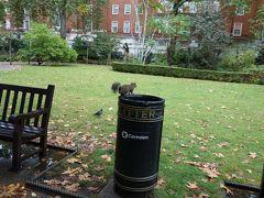初めてのロンドン一人旅((大英博物館とリバプール)