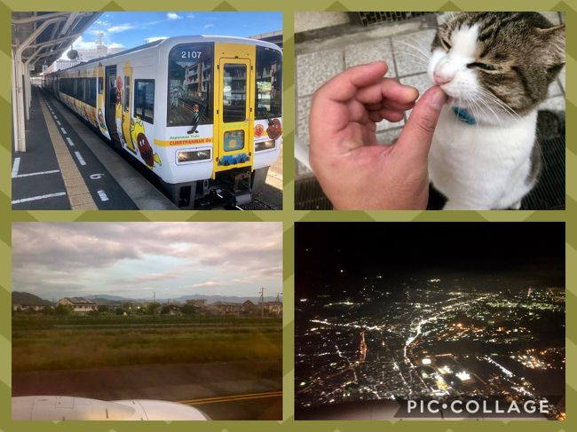 ・・・画像にコメントを入れて保存かけてたら<br />ログイン有効期限が切れて保存されてなかった・・・<br /><br />色々反省すべき事も多い旅もいよいよ帰路です。<br />宇和島からアンパンマン列車で松山へ戻り道後温泉でタマ(猫)に別れの挨拶をしてリムジンバスにて松山空港へ<br />昨日の伊丹空港のナイフ所持事件の影響かJALは遅れが(ANAはもっと長い遅れ)<br /><br />JAL439便は40分少々の遅れで羽田へ到着しました。<br /><br />-----------------------------------------------------------------------------<br /><br />地図を見ないでyahoo時刻表でスケジュール作成したので<br />ほぼ1周かと思いきや半周+α位です。<br /><br />昨年初めて四国に降り立ちました(愛媛)が・・・・<br />まだ・高松・徳島・高知と未踏が3県あります。<br />誕生日月に利用できるバースデイきっぷで四国制覇を目指します。<br /><br />※ 偉そうなタイトルを付けてますが・・・<br />一般の乗り鉄旅行記ほど詳しくはないことご了承願います。<br /><br />本当は行きと帰りで別々の空港利用が効率的にも良いのだけど<br />思い立ったのが遅く航空券が割高だったこともあり、楽天トラベルでのパッケージで予約しました。JALを選択しましたが、ANAの方が少し2.000円弱安かったです。<br />宿泊先はチェックイン松山☆奥道後温泉からの引湯と繁華街から近かったので(#^.^#)<br /><br />◆行程◆<br /><br />9/25(水)<br /><br />・羽田空港16:50 ⇒ 松山1空港18;15 JAL439便<br />・松山空港 ⇒ 松山駅 リムジンバスで移動してバースデーきっぷ購入<br />・松山駅 ⇒ 大街道 伊予鉄道市内電車 大街道泊<br /><br />9/26(木)<br /><br />・大街道 ⇒ 松山駅 早朝なのでタクシー利用<br />・松山6:13⇒高松8:44 いしづち6号 <br />・高松9:11⇒徳島10:18 うずしお7号 <br />・徳島12:01⇒阿波池田13:16剣山5号 <br />・阿波池田13:32⇒高知14:42 南風9号 G<br />・高知17:13⇒多度津18:56 南風24号 G<br />・多度津19;26⇒松山21:32 しおかぜ23号 G<br /><br />松山から右回りで周りましたが、左回りだともっと時間が遅くなります。<br /><br />Gはグリーン車の略です。<br /><br />ミッション<br /><br />・高松でさぬきうどん<br />・徳島で徳島ラーメン<br />・高知で龍馬像、高知城、ひろめ市場でカツオのたたき<br /><br />有効期限3日なのでもったいないので・・・<br /><br />9/27(金)<br /><br />・松山10:15⇒宇和島11:33 宇和海9号 <br />・宇和島12:55⇒松山14:14 宇和海16号<br />・松山 ⇒ 道後温泉 伊予鉄道市内電車<br />・道後温泉 ⇒ 松山空港 リムジンバス<br />・松山空港17:40 ⇒ 羽田空港19:05 JAL439便<br /><br />ミッション<br /><br />・ホビートレイン撮影<br />・宇和島城<br />・宇和島鯛めし<br />・道後温泉 飛鳥の湯 入浴 猫と遊ぶ<br /><br />鳴門の渦潮が見たかったが、行程的に無理でした。<br /><br />※バースデイきっぷとは<br /><br />JR四国全線(サンライズ瀬戸は不可)と土佐kぅろしお鉄道が3日間<br />乗り放題になる。<br />同行者も3名まで同じ料金で利用可<br /><br />普通車自由席用 9.500円<br />グリーン車用 13.000円(事前席指定必須)<br /><br />グリーン車用は伊予灘ものがたりなどの観光列車も利用可<br />