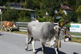 2019年ドイツ&オーストリアハイキングー10 Fulpmesu&Neustift で牛追い祭り\(^_^)/ ムッターベルグでビール
