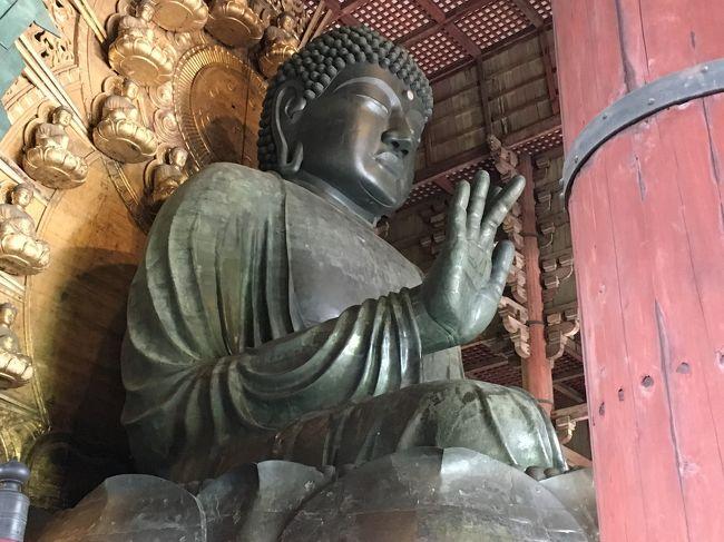 いつからか大仏様に会いたくて。<br />2年程前に春日大社には行ったのに東大寺には行ってない。<br />もしかして、小学校の修学旅行以来のような。<br /><br />1日目、東大寺をメインにならまち散策、そして、かんぽの宿奈良に1泊のプチ旅行です。