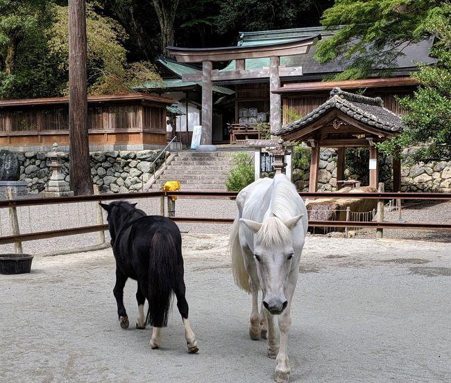 9月ももう終わり。秋の味覚といえば「梨」。<br />奈良県吉野町に行けば梨の直売所がたくさんあると聞き、行ってみました。<br /><br />意外と早く着いてしまったので、道の駅と丹生川上神社にも少し足を延ばしてみました。