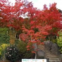 つくば_Tsukuba  「西の富士、東の筑波」!秋には紅葉も楽しめる学園都市