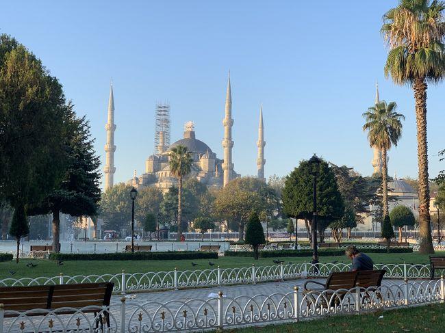 個人旅行でトルコ10日間。<br />#10/1、10/2フランクフルト経由でイスタンブール国際空港、旧市街地泊<br />10/3イスタンブール旧市街地観光、旧市街地泊<br />10/4サビハギョクメ空港から飛行機でパムッカレ、ヒエラポリス遺跡観光、クシャダシ泊<br />10/5エフェス遺跡観光、イズミル空港から飛行機でカイサル空港、カッパドキア泊<br />10/6カッパドキア北ツアー、カッパドキア泊<br />10/7カッパドキア南ツアー、深夜飛行でイスタンブル、新市街地泊<br />10/8イスタンブル新市街地観光、新市街地泊<br />10/9イスタンブルから日帰りでプリンス島、新市街地泊<br />10/10早朝便、ヒースロー空港経由で帰国<br /><br />トルコリラ暴落(1リラ約18円)、物価上昇、旅行後半にはシリア空爆が在ったりの2019秋。<br />そんな中、王道の観光地を個人旅行(現地ツアー参加)してきました。<br />