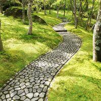 人生初のアクシデントがありましたが・・箱根と熱海で温泉を楽しみました